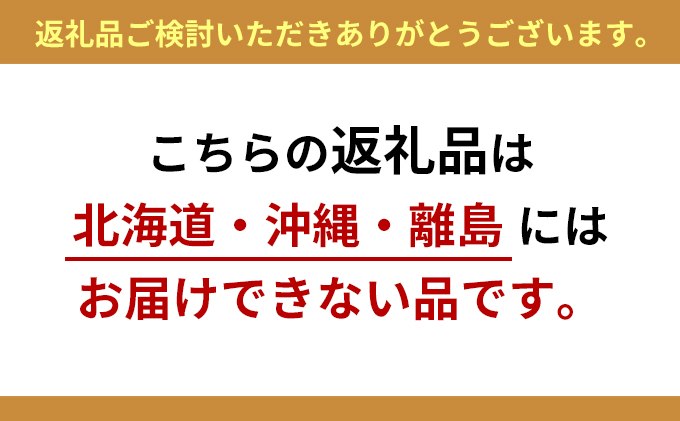 静岡県浜松市のふるさと納税 光の楽園 オリーブ1.3【配送不可:北海道・沖縄・離島】