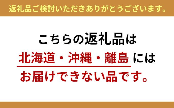 静岡県浜松市のふるさと納税 光の楽園 ミニリーフG/W【配送不可:北海道・沖縄・離島】