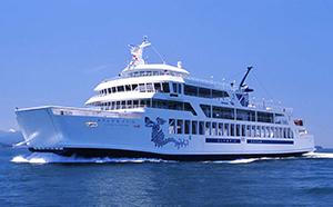 小豆島への旅行に!フェリー往復チケット(新岡山港~土庄港)&温泉付きペア宿泊券