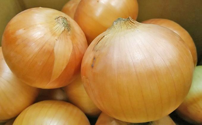 北海道十勝足寄産 酵素玉葱6kg