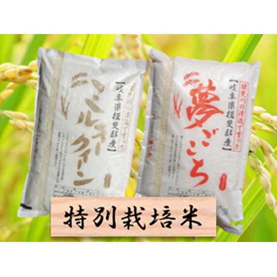 特別栽培米★白米10kg【ミルキークイーン・夢ごこち】