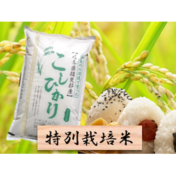 特別栽培米★白米5kg【コシヒカリ】