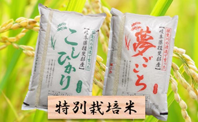 特別栽培米★精米20kg(分搗き可)または玄米22kg【コシヒカリ・夢ごこち】