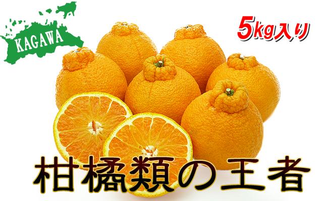 香川県産 あま~いデコポン[不知火]たっぷり5kgの詰め合わせ