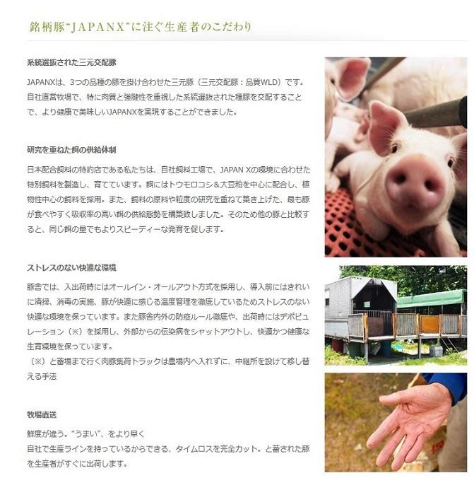 宮城県蔵王町のふるさと納税 【10ヶ月連続】JAPAN X豚小間1.5kg&家庭用牛タン(塩味)600g/計2.1kg【定期便】【訳あり】
