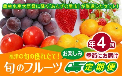 【年4回季節】旬のフルーツお楽しみ定期便★あんずの里【随時開始】[C6240]