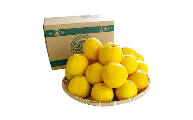 美生柑(みしょうかん)「愛南産の河内晩柑」約7.5キロ入り(22個~18個)