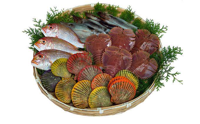漁師の海鮮BBQ「B」セット(約5人前)