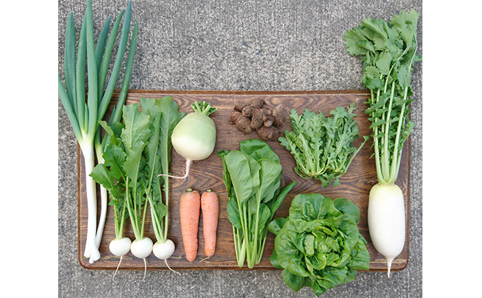 ORGANIC FARM 風の谷 旬の自然栽培野菜 7~9品目