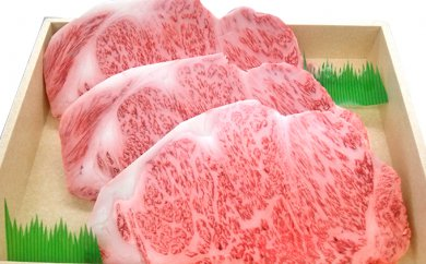 とちぎ和牛 サーロインステーキ 900g
