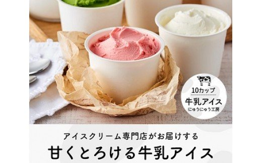 014AE01N.アイスクリーム詰め合わせ(10個)