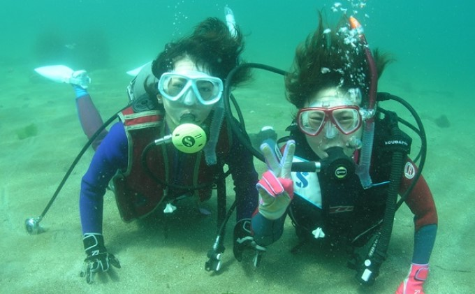 秋田県男鹿市のふるさと納税 【なまはげの海でダイビング!!】 海洋体験ビーチダイビング 1名様