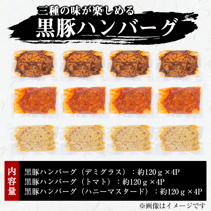 鹿児島県志布志市のふるさと納税 a0-125 三種の味が楽しめる黒豚ハンバーグ(合計1.4kg超)