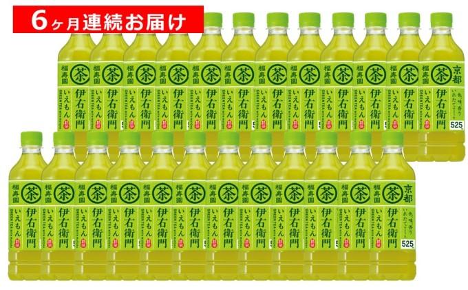【6ヶ月定期便】サントリー 緑茶 伊右衛門 525ml×24本
