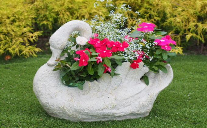 季節のお花寄せ植え(白鳥型鉢)