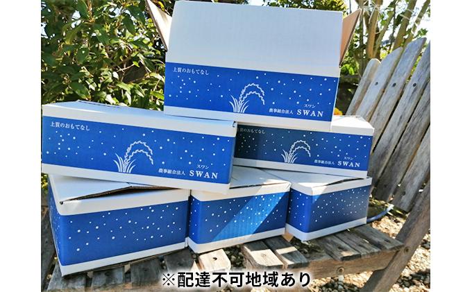 令和2年コシヒカリ新米!(精米24kg)4kg×6