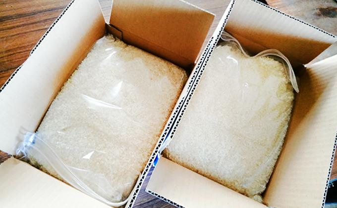 香川県東かがわ市のふるさと納税 令和3年 コシヒカリ新米予約!(精米12kg)4kg×3