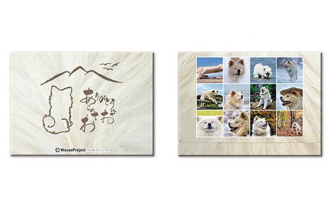 青森県鰺ヶ沢町のふるさと納税 わさお ありがとう 絵葉書12枚セット