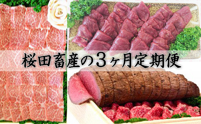 【 桜田畜産の定期便 3回 】(1)『 馬