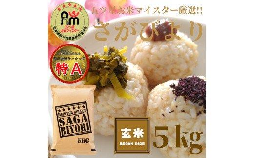 CI094 【玄米】さがびより5kg 【五つ星お米マイスター厳選!】