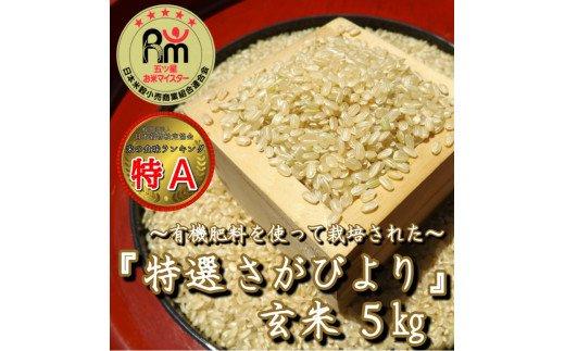 CI004 【令和元年度産】有機肥料を使って栽培した≪特選さがびより≫みやき町産【玄米5kg】