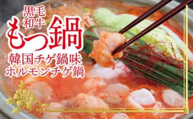 ホルモンチゲ鍋セット 土佐しらぎく(清酒)付き<高知市共通返礼品>