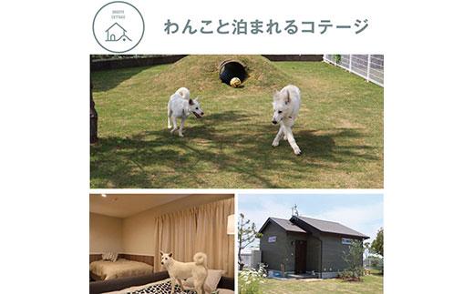 高知県芸西村のふるさと納税 ONIWAご利用券 6,000円<ゆったり空間で贅沢キャンプ わんこと泊まれるコテージ>