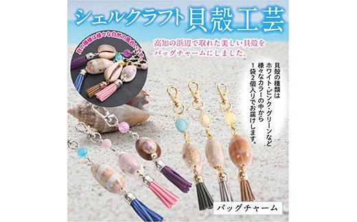 高知の浜辺でとれた美しい貝殻のバッグチャーム 2個