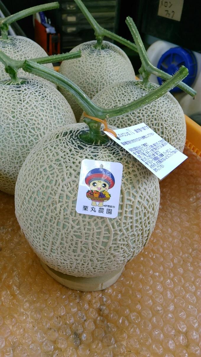 【2021年7月~出荷予定】栗丸農園 アールスメロン2玉