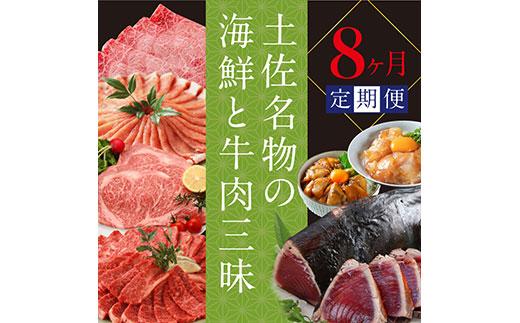 土佐名物の海鮮と牛肉三昧8ケ月定期便<高知県・高知市共通返礼品>