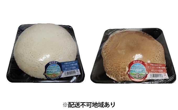 超特大スーパージャンボ マッシュルーム 2個【配達不可:北海道・沖縄・離島】