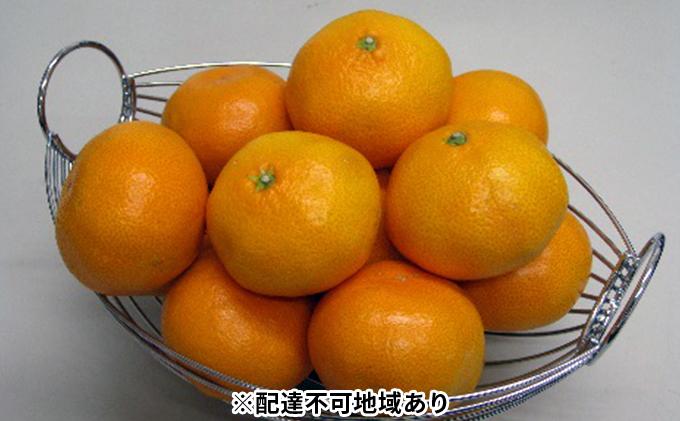 温州みかん 約3kg(内傷み補充分500g