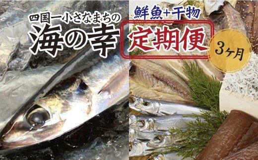 【四国一小さなまちの海の幸】~旬の朝どれ鮮魚と土佐の干物セット~ カネアリ水産の海の幸定期便3ヶ月