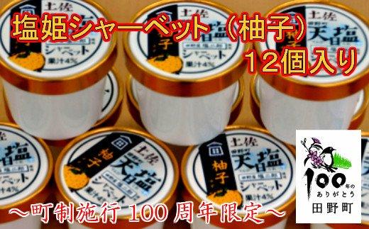 【町制施行100周年限定】~四国一小さなまち~ 塩姫シャーベット(柚子)12個入り
