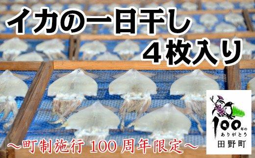 【町制施行100周年限定】~四国一小さなまち~ カネアリ水産のイカの一日干し4枚入り(冷凍)