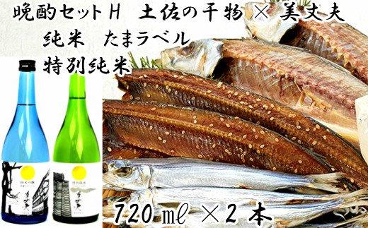 【晩酌セットH】土佐の干物×美丈夫(720×2本)セット