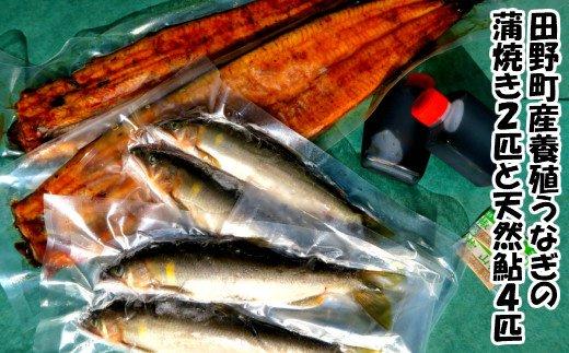 田野町産うなぎの蒲焼き2匹と天然鮎4匹セット