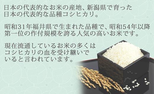 愛知県碧南市のふるさと納税 新潟県産コシヒカリ 無洗米 6kg(2kg×3袋) 安心安全なヤマトライス H074-196