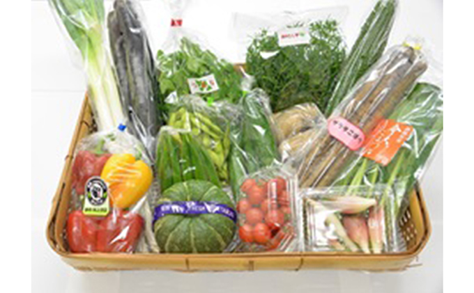 産地直送!新鮮季節の野菜セット(野菜14品程度)