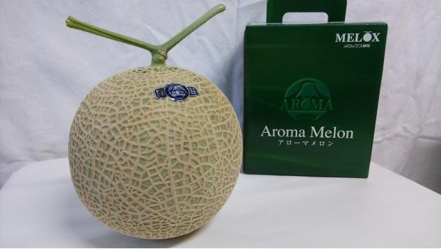 静岡県産高級アローマメロン1玉