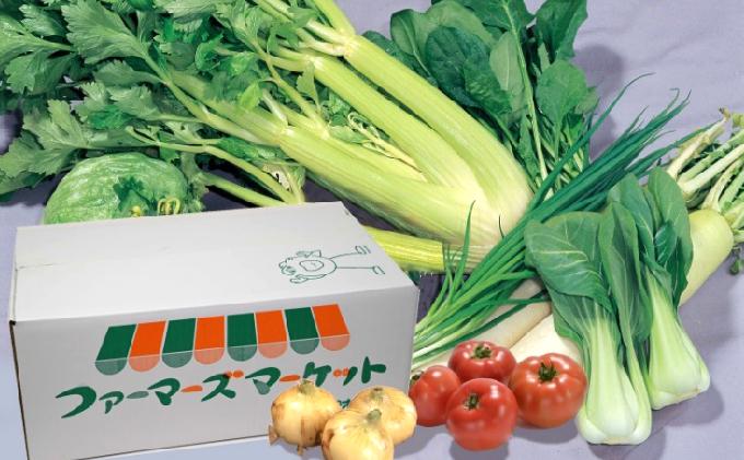 浜松産の野菜詰め合わせボックス【配送不可:離島】