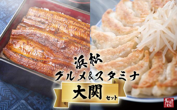 (SF29)浜松グルメ&スタミナセット「大関」浜名湖うなぎ大蒲焼9尾+白焼き+肝焼き+浜松餃子90粒