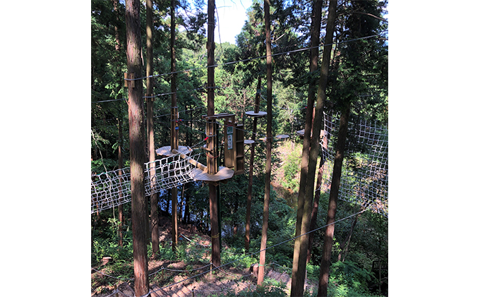 奈良県王寺町のふるさと納税 冒険の森inおうじ ディスカバリーコース5名様チケット
