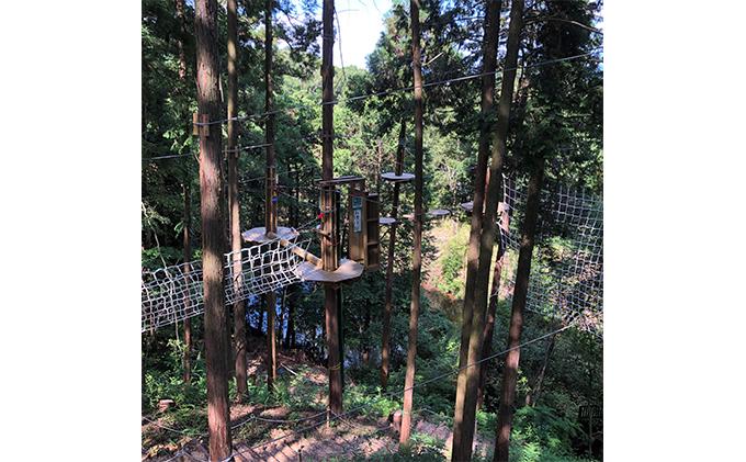 奈良県王寺町のふるさと納税 冒険の森inおうじ アドベンチャーコース3名様チケット