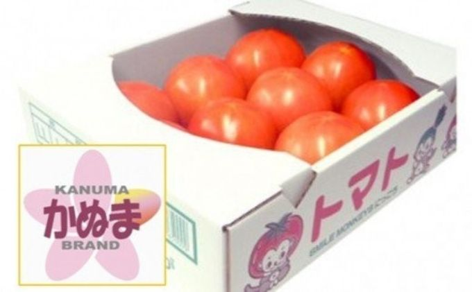 『かぬまブランド認定』鹿沼の美味しい大玉トマト(麗容)