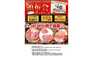 定期便 肉 お楽しみ 南国土佐のお肉満腹3ヶ月コース