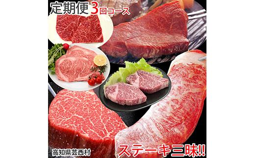 定期便 肉 お楽しみ ステーキ 南国土佐の 特選 ステーキ 3ヶ月コース<高知市共通返礼品>