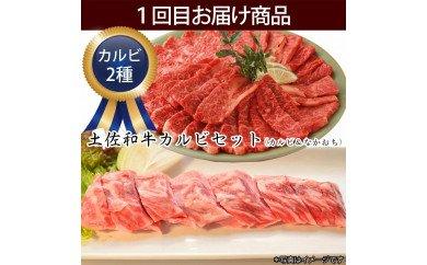 定期便 肉 お楽しみ 南国土佐の焼肉パーティー3ヶ月コース<高知市共通返礼品>
