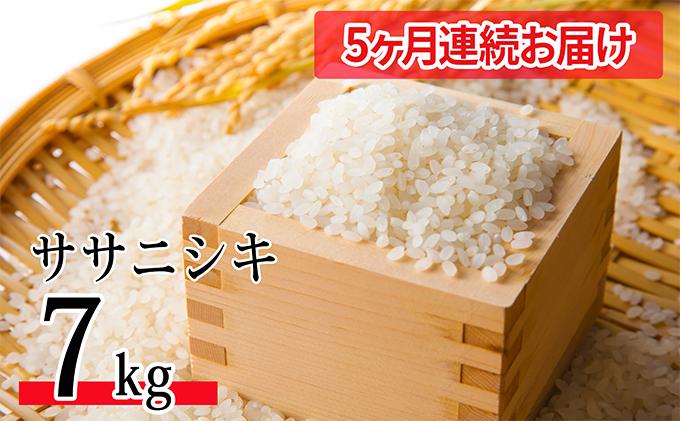 【5ヶ月連続お届け】令和2年産 郷の有機使用特別栽培米ササニシキ 7kg