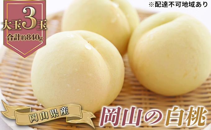 ●先行予約受付●岡山の 白桃(早生種)大玉3玉(1玉約300g)
